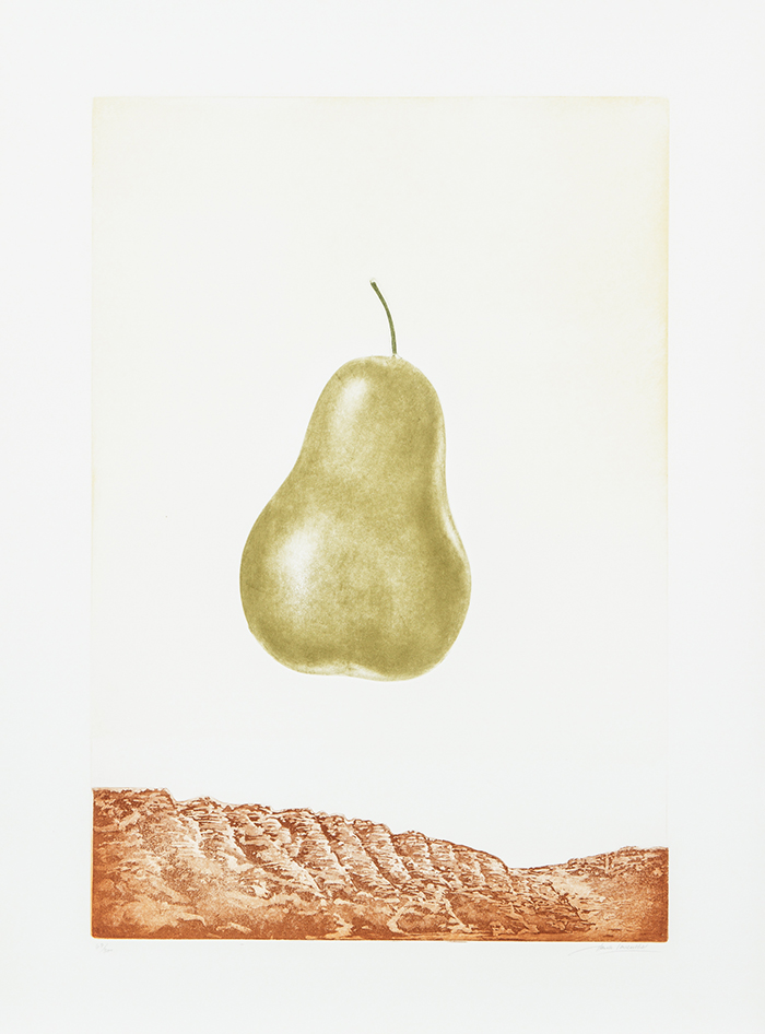 Fruit (pear) artwork by Hank Laventhol